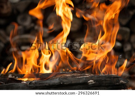 Burning wood in fire close-up - stock photo