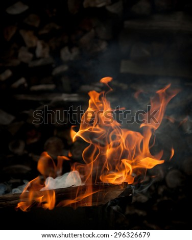 Burning wood in fire, flames on a blurred background wood - stock photo