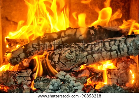 Burning wood in the fireplace and the flames