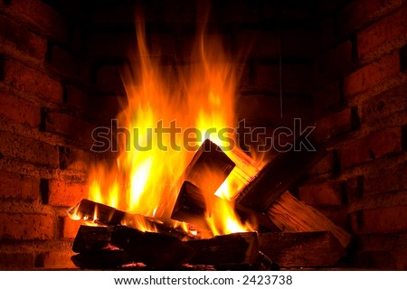 Burning wood logs in fireplace
