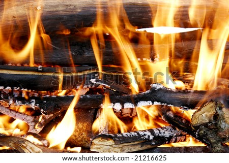 burning woods in fireplace - stock photo