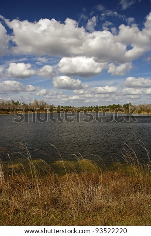 Burns Lake, Big Cypress National Preserve, Florida Everglades - stock photo