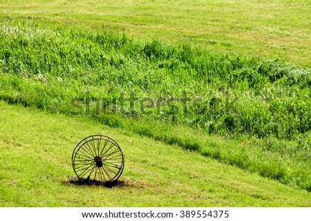 Burnt antique metal carriage wheel in a meadow.