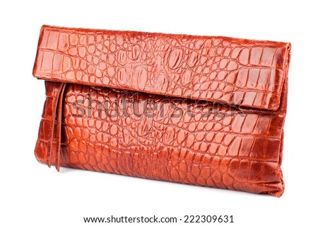 Burnt Orange female clutch isolated on white background(made of reptile skin) - stock photo