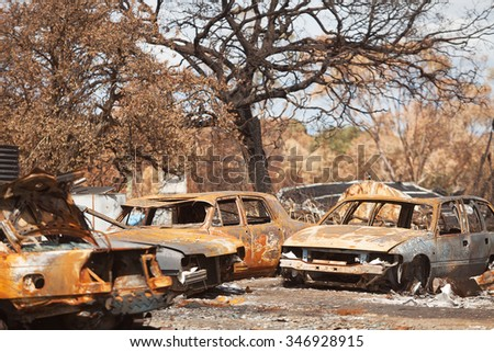 Burnt out motor vehicles and trees, destroyed by bushfire, Dunalley, Tasmania - stock photo