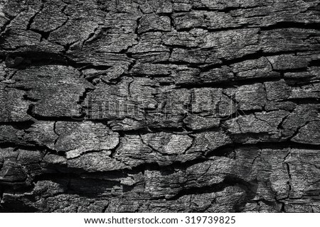 Burnt wood texture - stock photo