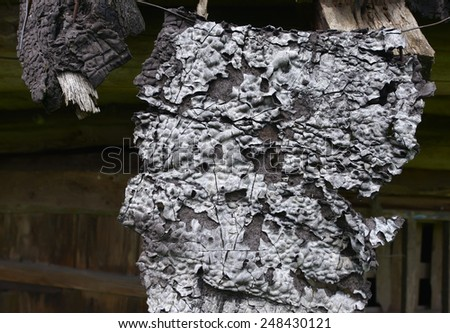 Burnt wooden boards - stock photo