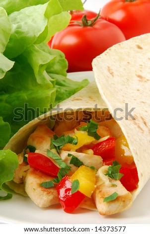 Burrito with chicken and vegetables - stock photo
