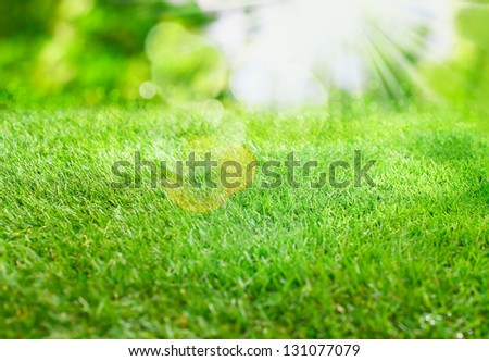 Burst of summer sunlight over lush green grass with lens flare and bokeh for a fresh spring or summer background - stock photo