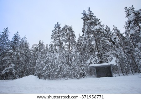 Bus stop in winter snowy forest - stock photo