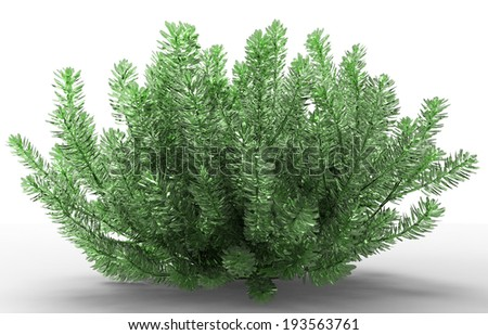 bush - stock photo