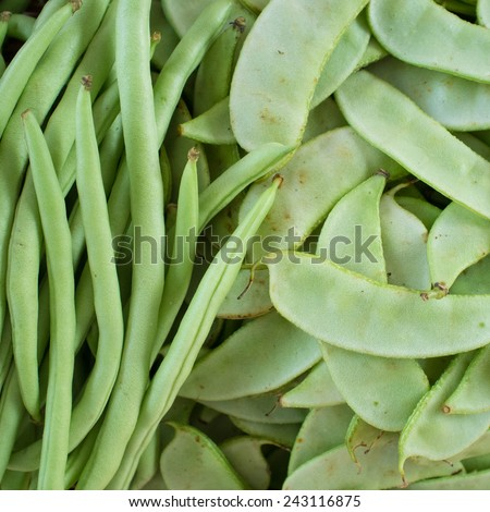 Bush Bean , French Bean and Sugar Pea - stock photo