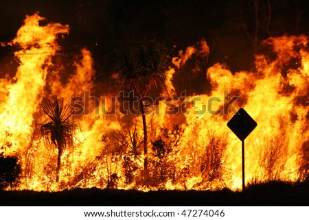 Bush fire close up at night - stock photo