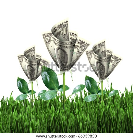 Bush of dollar bills on the green grass against the blue sky. Concept. - stock photo