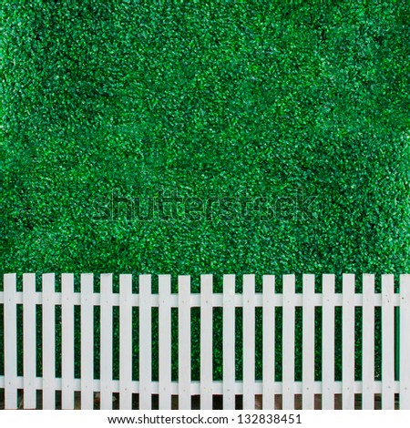 Bush wall with white fence for background - stock photo