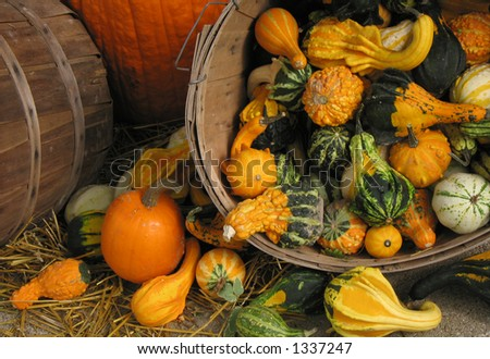 bushels and gourds - stock photo