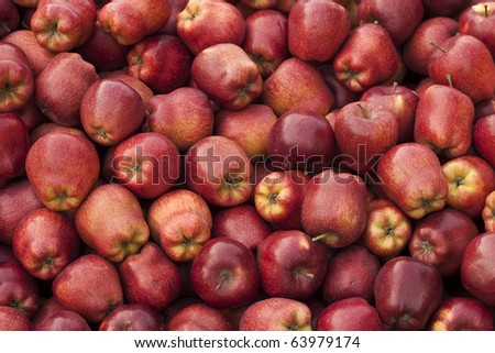 Bushels full of fresh red delicious apples for sale. Shallow depth of field. - stock photo