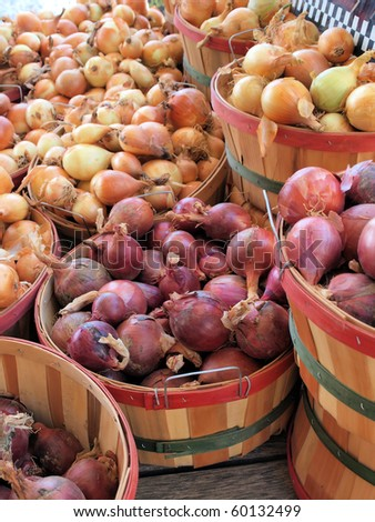 Bushels of fresh picked onions at a roadside market - stock photo