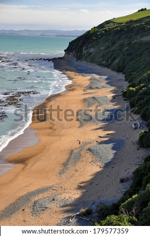 Bushy Beach scenic reserve (penguin & seal watching), Oamaru, Otago,New Zealand - stock photo