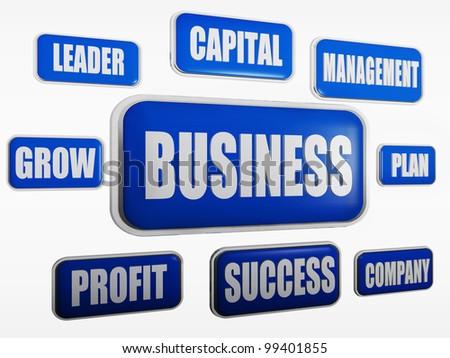 Business, capital, leader, management, grow, plan, profit, success, company - stock photo