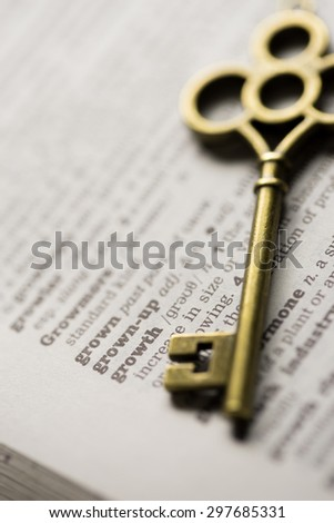 Business concept  key for growth - stock photo