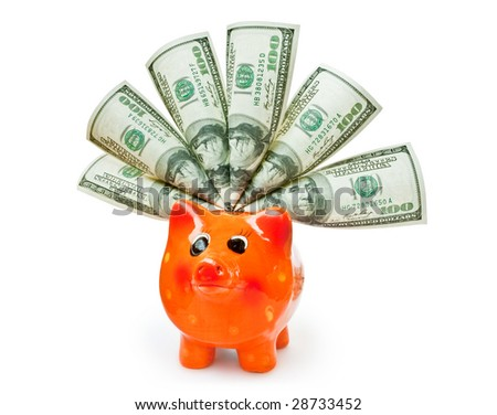 business concept. piggy bank with money isolated on white