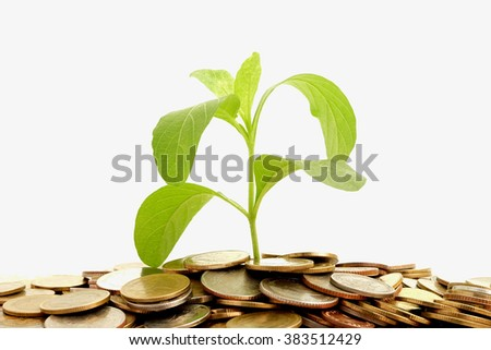 business conception.close - up plant growing on coin pile