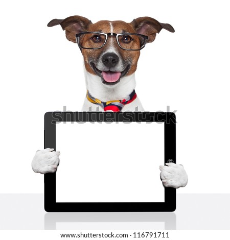 business dog tablet pc ebook computer notebook - stock photo