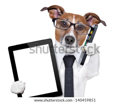 business dog with smartphone and a tablet pc