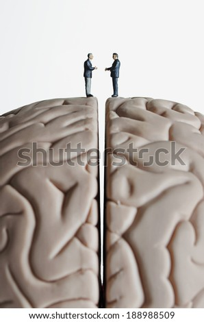 Business figurines placed on a brain model - stock photo