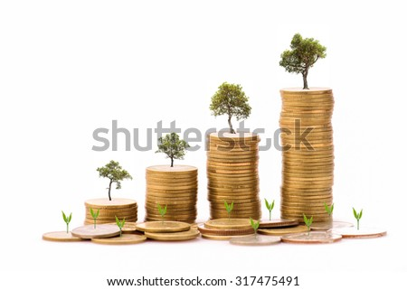 Business Finance and Money concept, Money Gold coin stack growing graph with white background,Trees growing on gold coin - stock photo