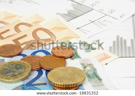 Business financial concept with diagrams and euro money - stock photo