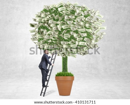 Business growth concept with businessman climbing dollar banknote tree on concrete background - stock photo