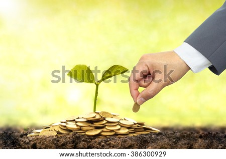 Business growth with csr practice / Business investment with environmental concern - stock photo