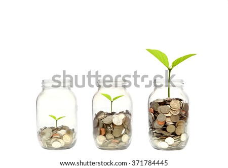 Business growth with csr practice / Green investment concept - stock photo