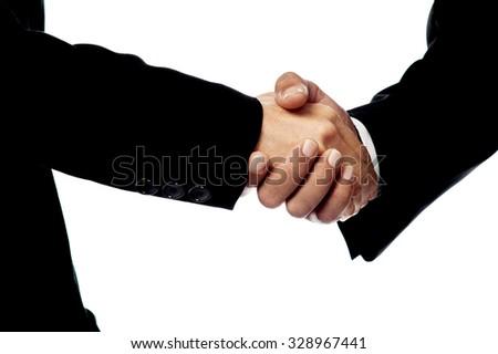 Business handshake, closeup shot. - stock photo
