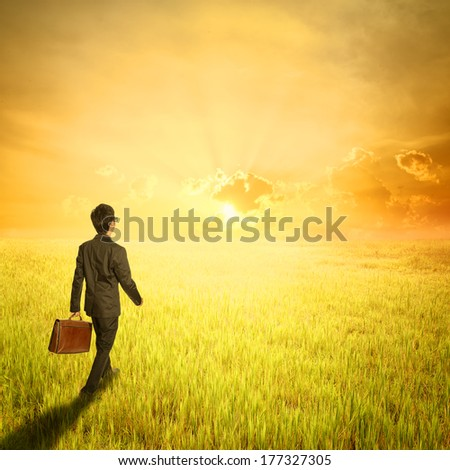 Business man walking and holding bag in fields and sunset