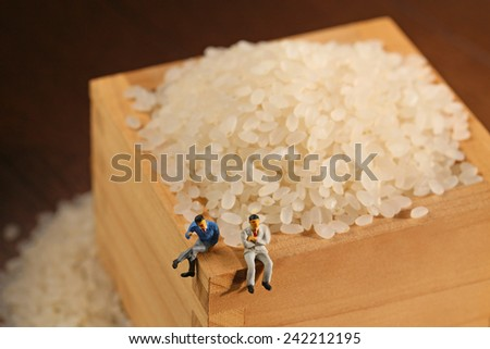 Business person with Rice - stock photo