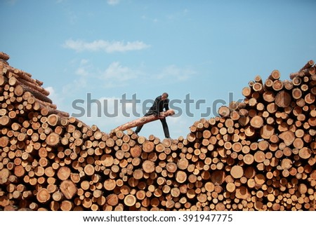 business vision - hardworking businessman on top of large pile of cut wooden logs