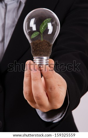 Business woman holding electric light bulb with growing green plant leaves inside, isolated on white background. - stock photo