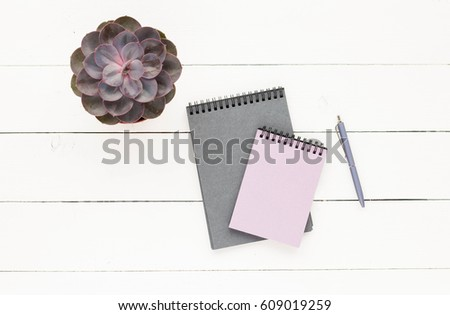 Business workspace with grey notebook, succulent, pen on white wooden background. Flat lay, top view