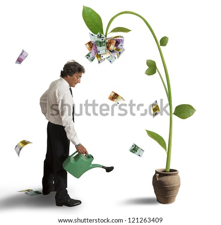 Businessman and a plant of money - stock photo