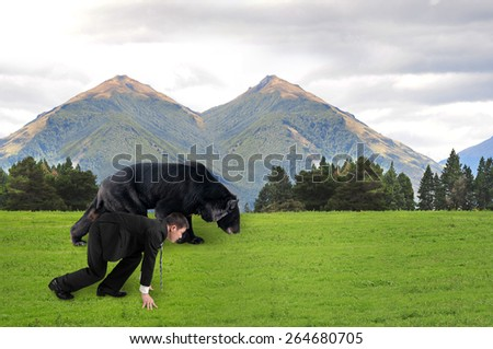 Businessman and black bear are ready to race on grass with natural mountains trees landscape background. - stock photo
