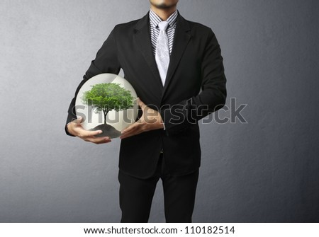 Businessman and green plant in hand