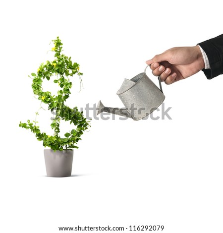 Businessman and watering pot  (path in side) isolated - stock photo