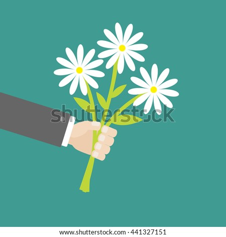 Businessman hand holding bunch bouquet of white daisy flowers. Greeting card.  Green background. Flat material design. - stock photo