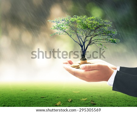 Businessman hand holding golden coin with big tree over blurred beautiful bokeh on rainy with abstract sunset nature background. Development plan, Investment, Money, Insurance Agent, ROI, LIT concept. - stock photo