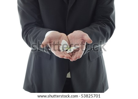 Businessman hands holding butterfly. Concept: have scruples about something, fragility. - stock photo