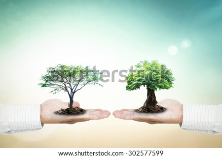 Businessman hands holding medium plant or big tree with soil on blur abstract beautiful sea or ocean or forest or desert over colorful sunset background. Corporate Social Responsibility (CSR) concept. - stock photo