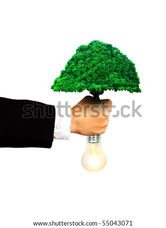 businessman hold tree and bulb to make clean eco power concept - stock photo